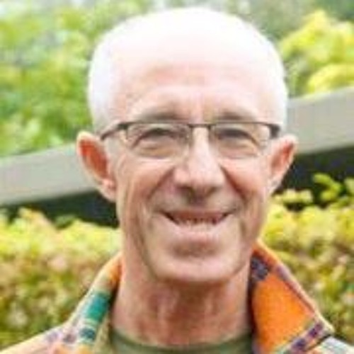 Raymond Van Groenewoud's avatar