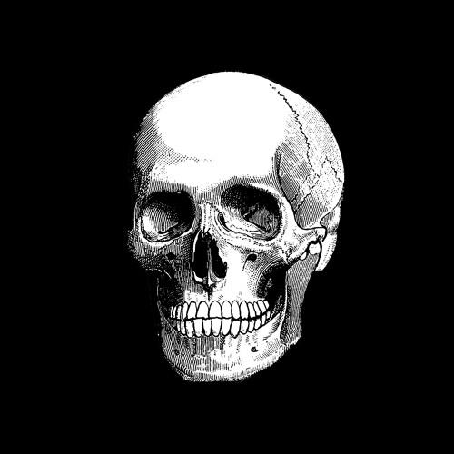 rdmccampbell's avatar