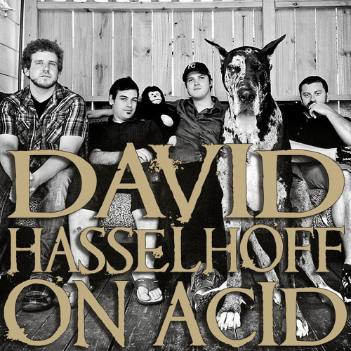 DAVID HASSELHOFF ON ACID's avatar