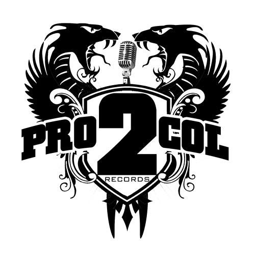 Pro2col Records's avatar