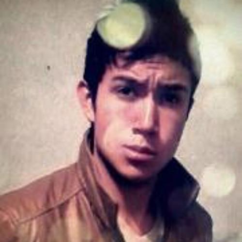Luis Mino 2's avatar