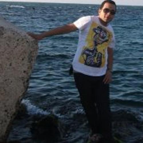 Mahmoud Kamal 12's avatar