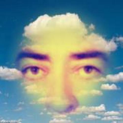 Hamid Salartash's avatar
