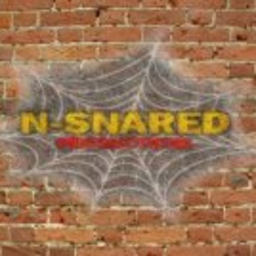N-Snared's avatar