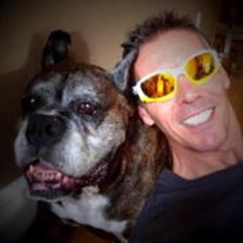 Steve Quick 1's avatar