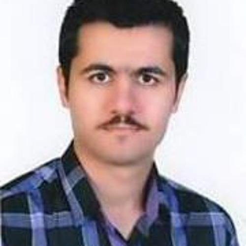 Max Alihosseini's avatar
