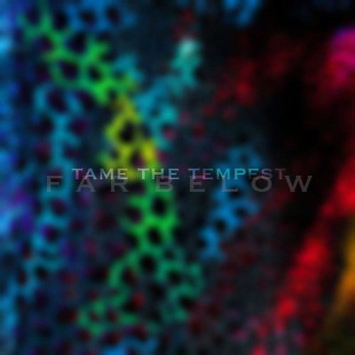 Tame The Tempest's avatar