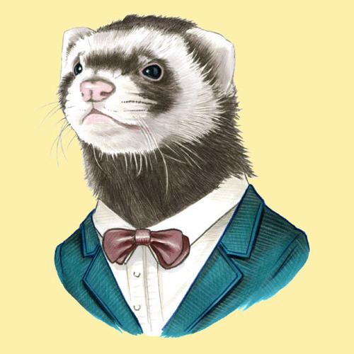 Digital Ferret's avatar