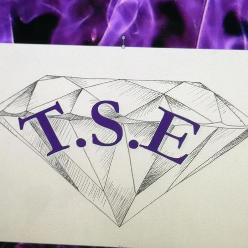 T$E THE FAM's avatar