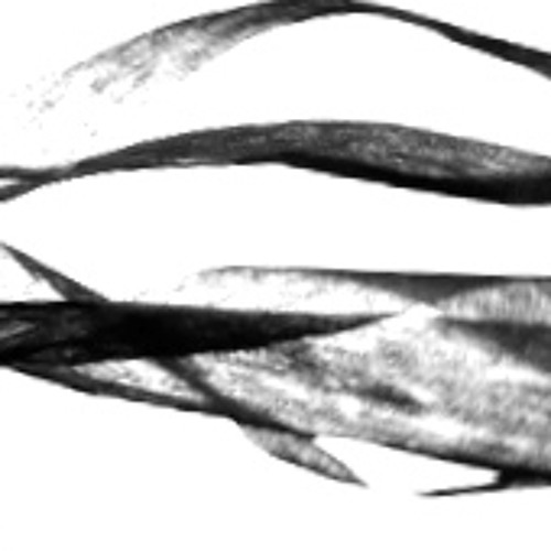 blixieperestroika's avatar