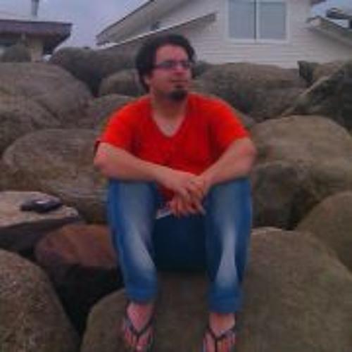 Hamed Nikpor's avatar
