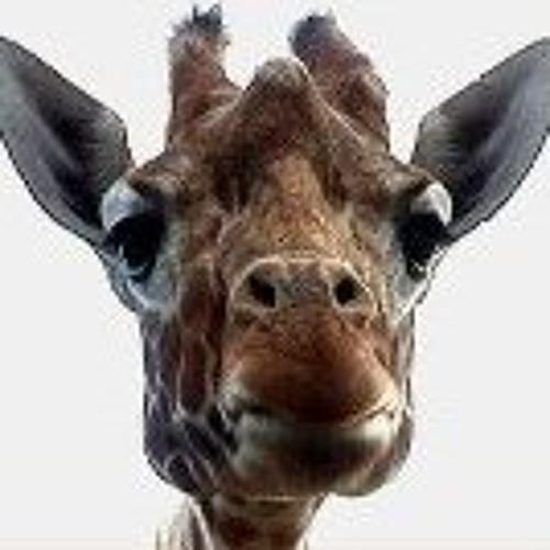 plamz's avatar