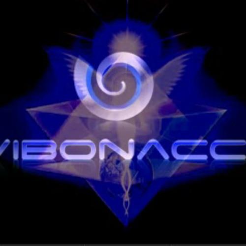 Vibonacci's avatar