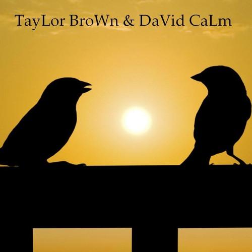 DaVid CaLm &TaYlor BroWn's avatar