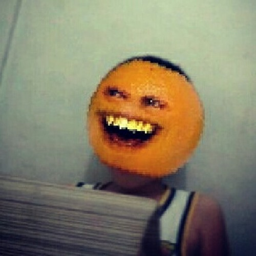 stevannuslake's avatar