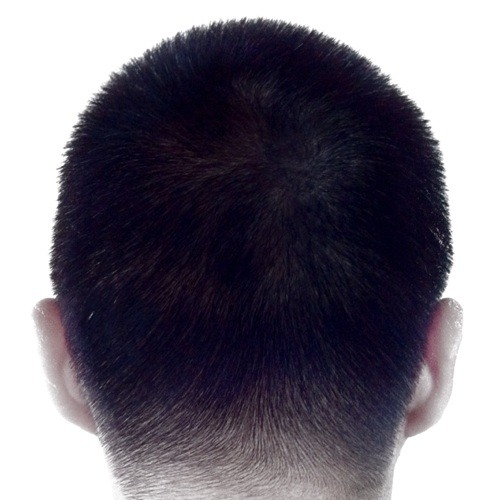 terencewynetan's avatar