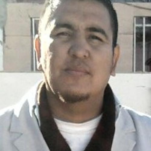 Igelcamino1's avatar