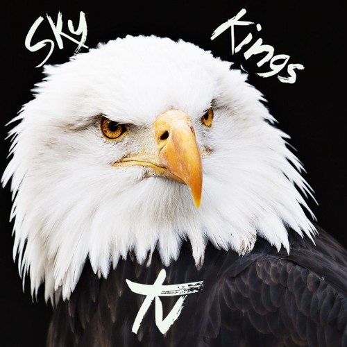 SkyKingsTV's avatar