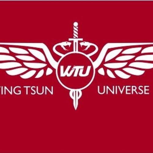 WingTsunUniverse's avatar