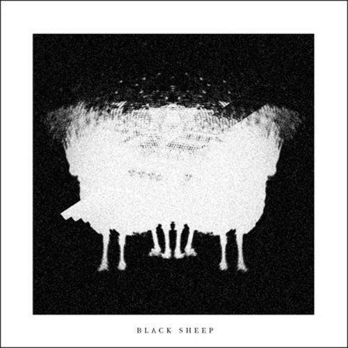 Black Sheep Set/live's avatar