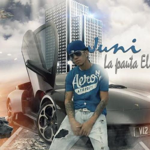 juni-la-pauta-electronic's avatar
