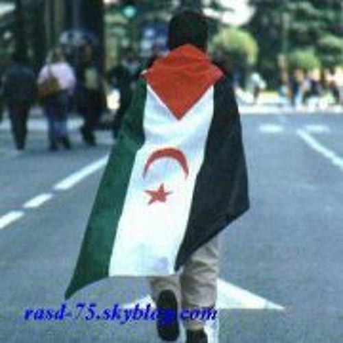 Sahrawi Walade Dajla's avatar