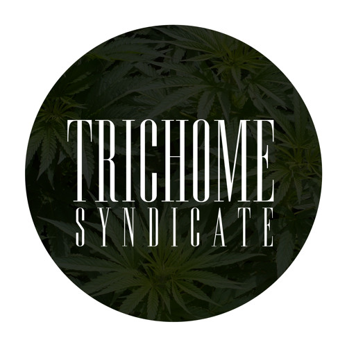 Trichome Syndicate's avatar