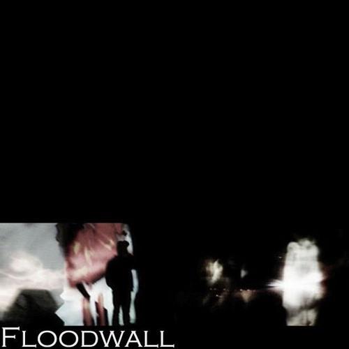 Floodwall's avatar