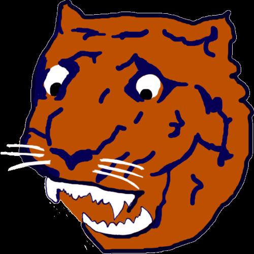 Saddest Tiger's avatar