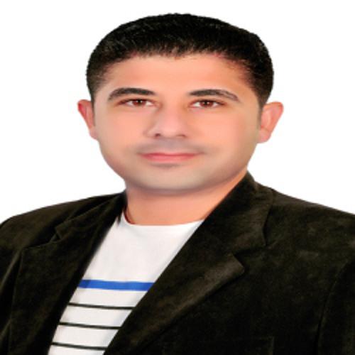 Ahmed Raslan's avatar