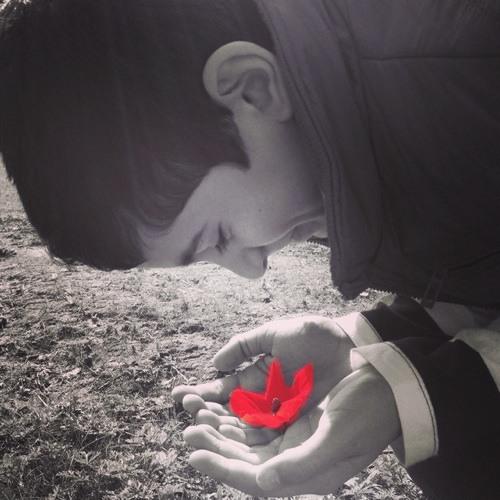 yoav.azu's avatar