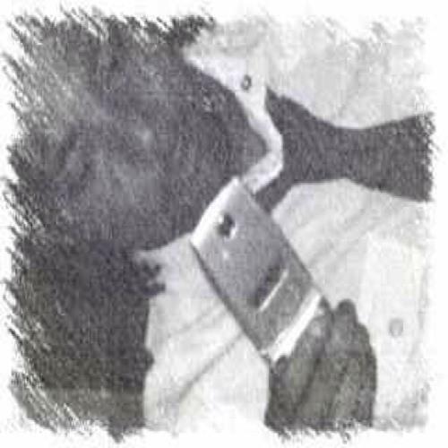 davidd121's avatar