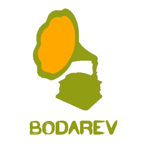 Bodarev Vasile's avatar