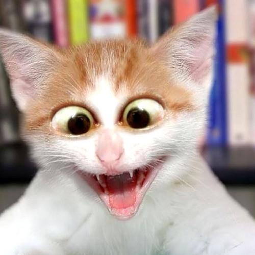 MCJaimeLOL's avatar