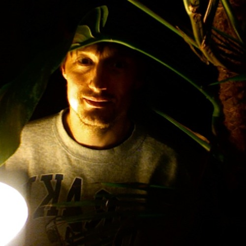 tim-coenen's avatar