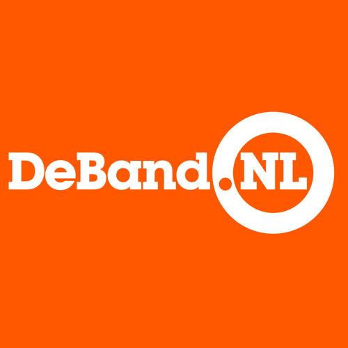 coverband DeBand.NL's avatar