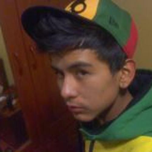 Gian Luu Bueno Romero's avatar