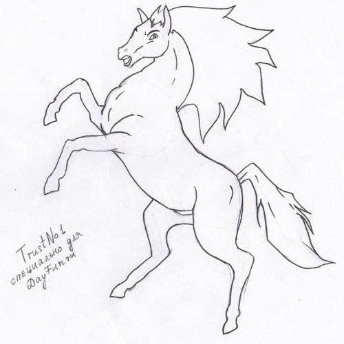 Kon''s avatar