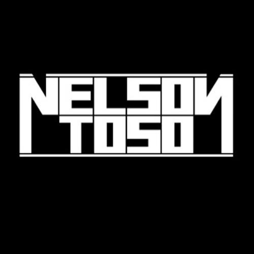 NelsonToso's avatar