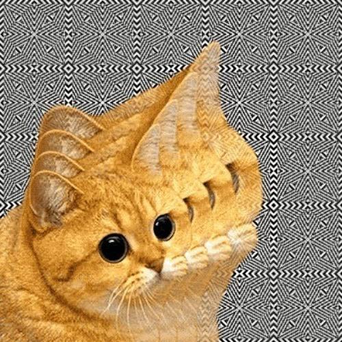 .SUSPIRIA.'s avatar