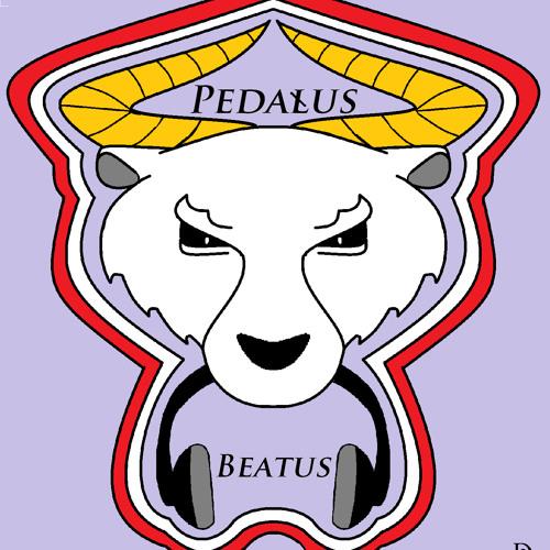 Pedałus Beatus's avatar
