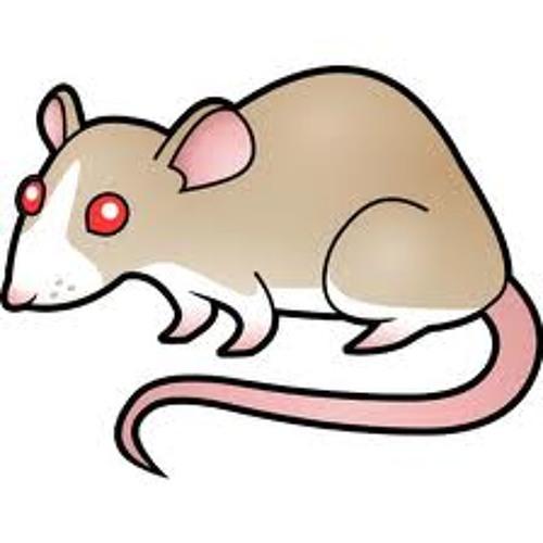 RatOutRecords's avatar