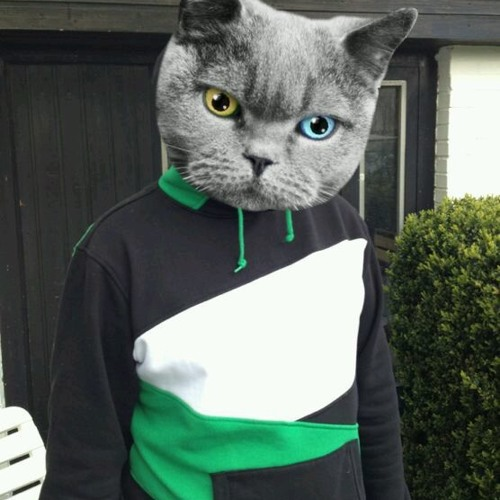 Waaaaang's avatar
