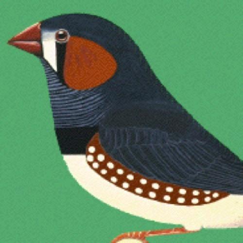 glennrhoda's avatar