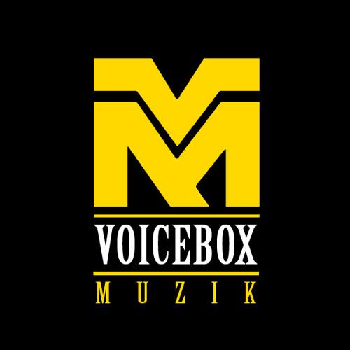 VOICEBOX MUZIK's avatar