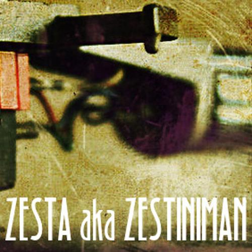 ZESTA's avatar
