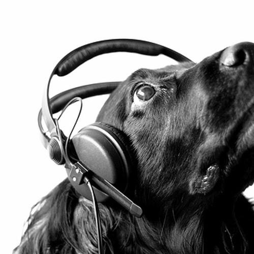 Musik.Hund's avatar