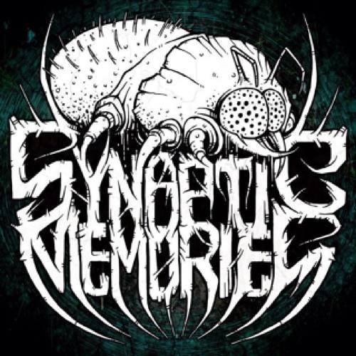 Synaptic Memories's avatar