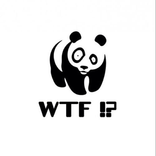 TOFASTFORYOU17's avatar
