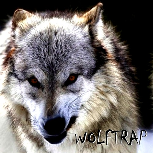 THE REAL WOLFTRAP's avatar